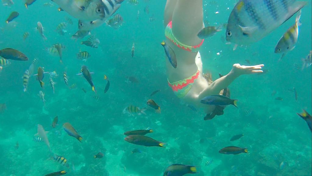 merete gamst dykker