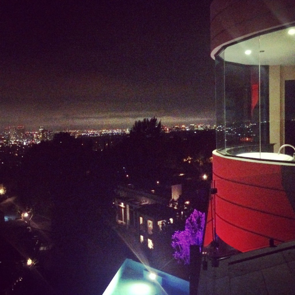 hollywood hills party