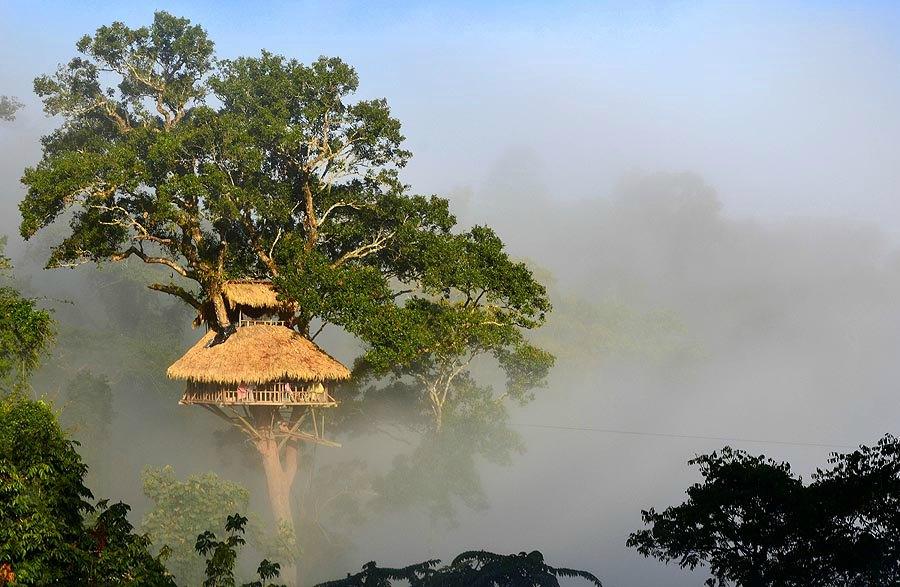 GIBBON EXPERIENCE, Nam Kan National Park, positivista, norsk reiseblogg – Laos