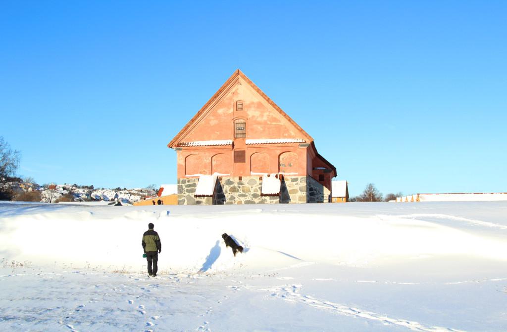 Korntinn i stavern vinter visitlarvik