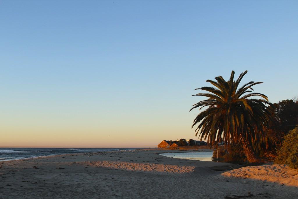 Malibu Positivista Reiseblogg Surf 6
