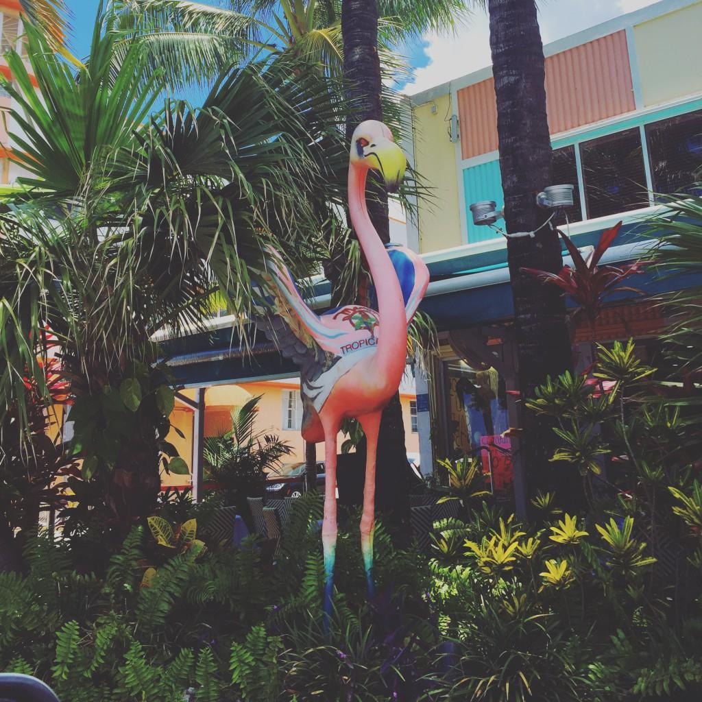 Ocean drive Miami reisetips