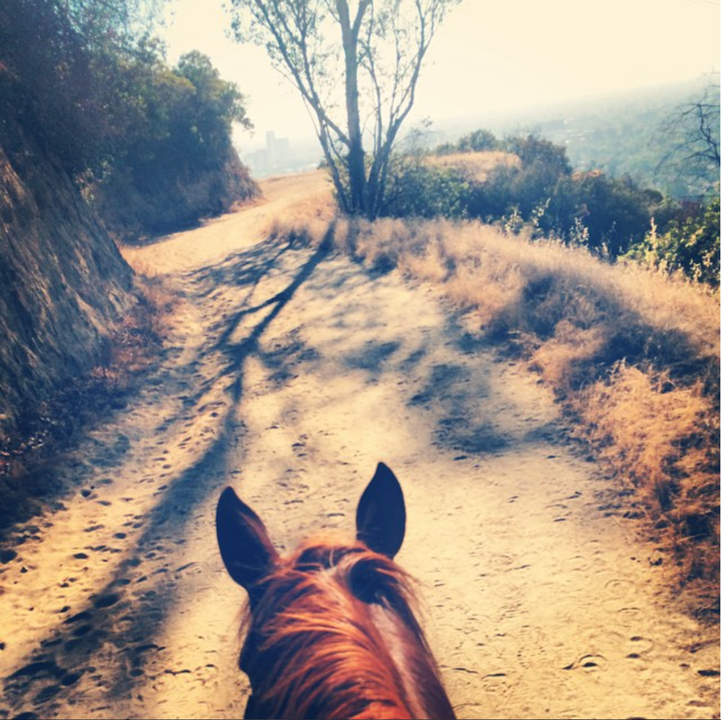 horse back riding los angeles