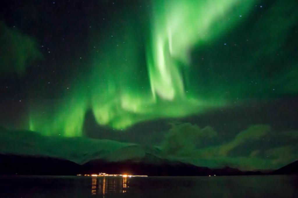 Nordlys i norge flott