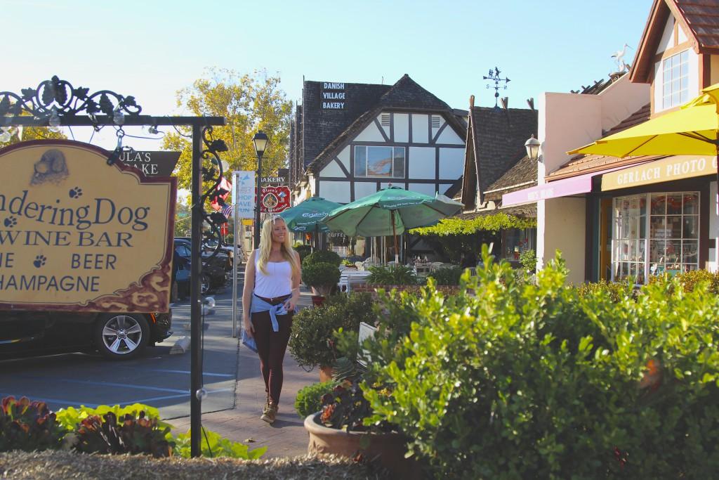 Solvang California positivista  reiseblogg matblogg reisetips Merete Gamst 12 NY