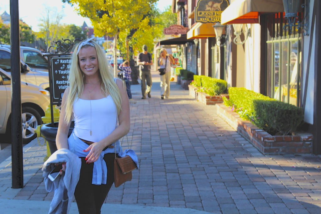 Solvang California positivista  reiseblogg matblogg reisetips Merete Gamst 22 NY