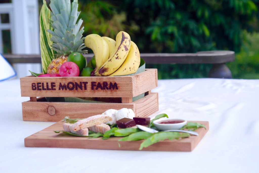 belle mont farm st kitts karibien hotell