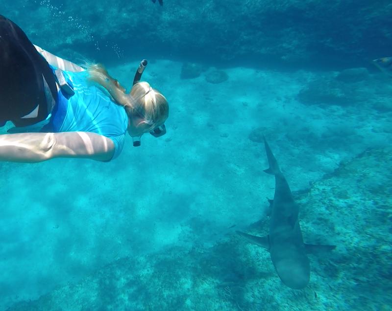 haidykk bahamas