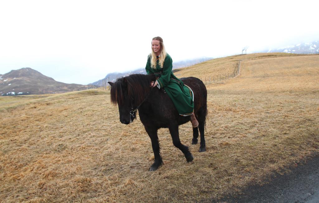 hester vikingmuseet lofotr lofoten