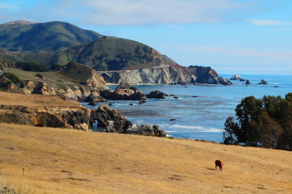 highway 1 pacific coast highway travel tips