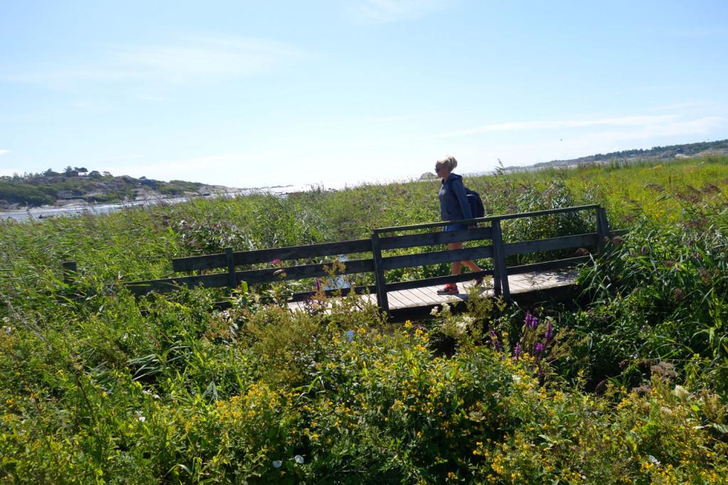 kyststien vestfold bro