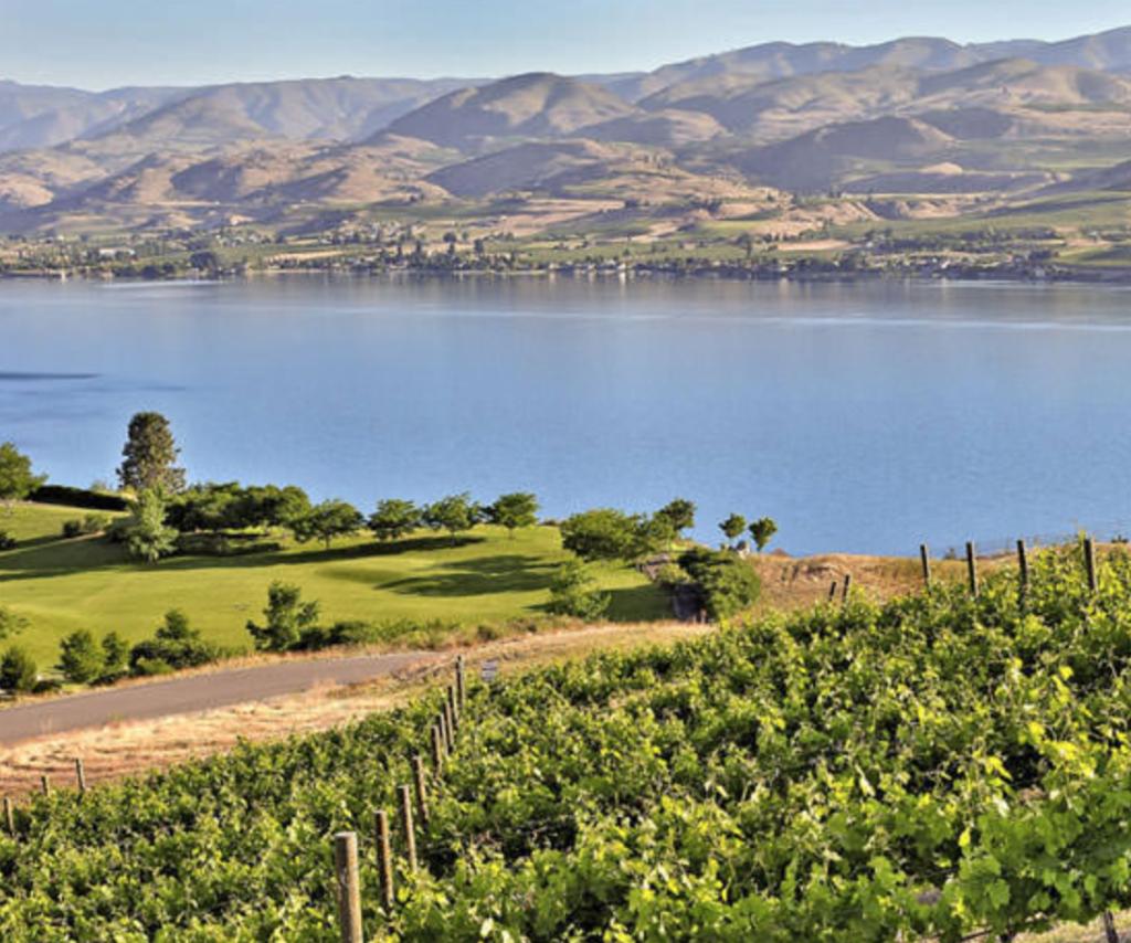 orondo winery