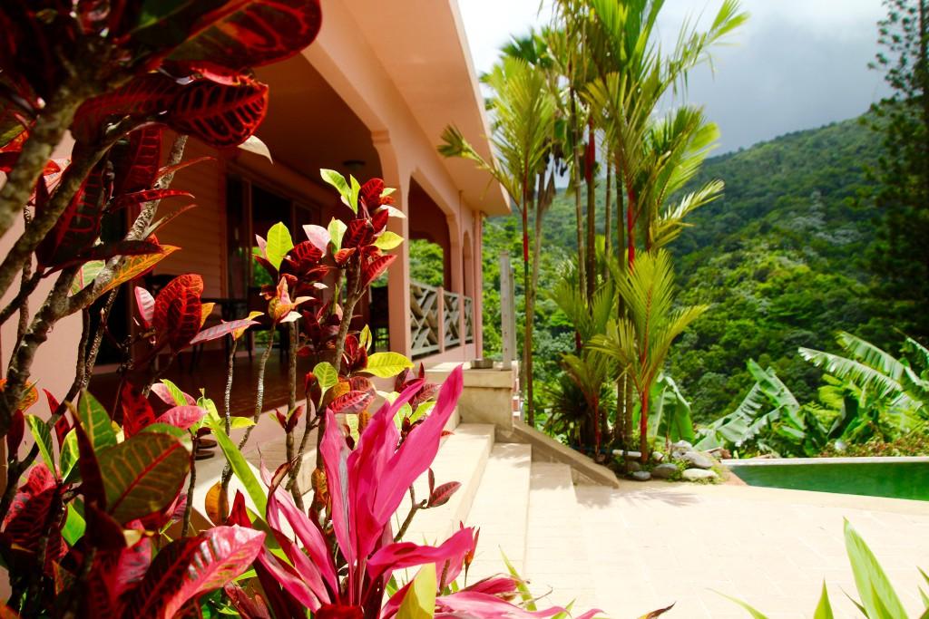 overnatte i regnskogen puerto rico hotell
