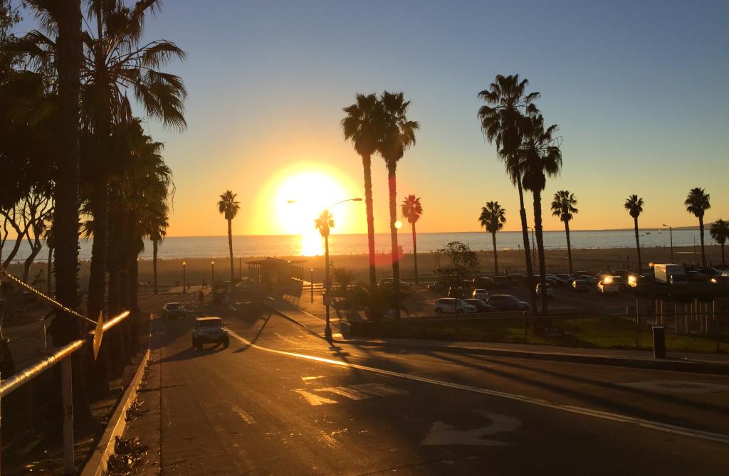 palmtrees and ocean in santa monica