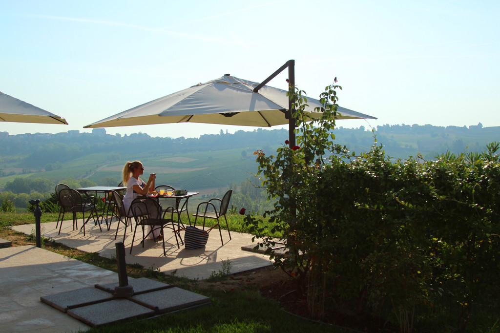 piemonte italia vingård