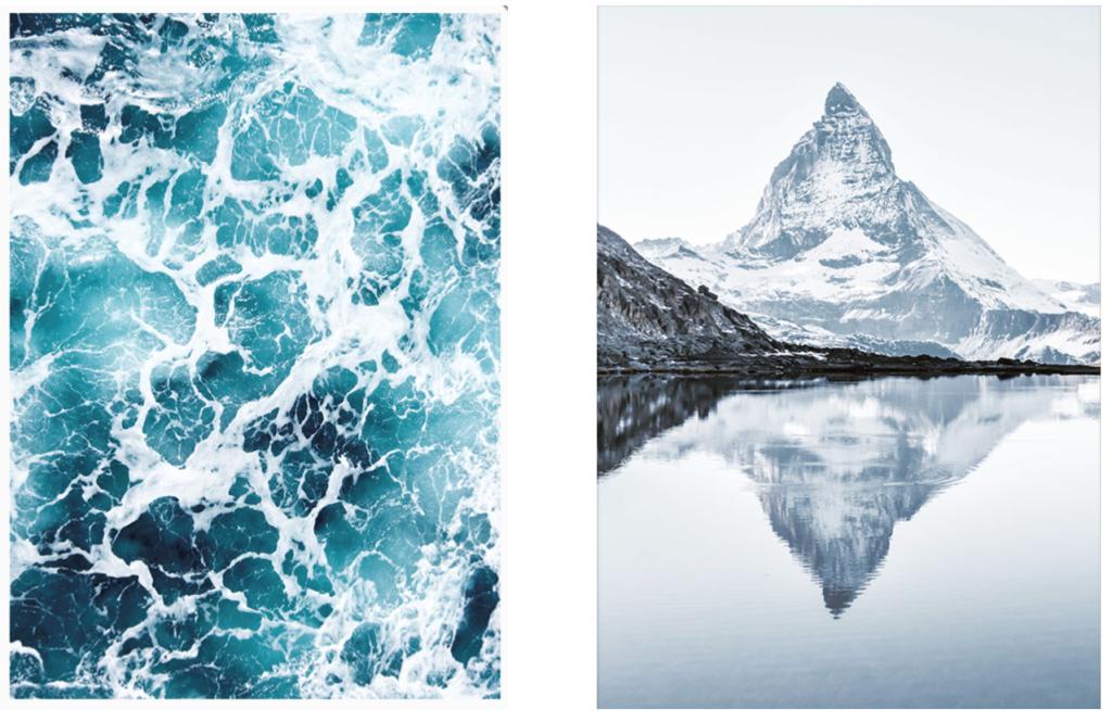 plakater-natur-naturplakater-stue