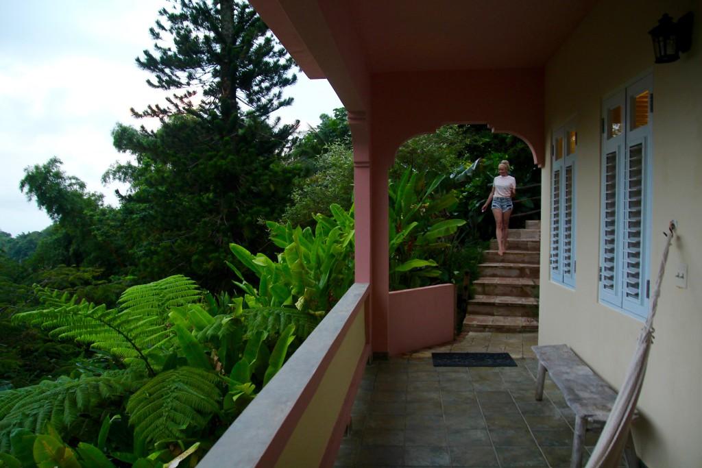 puerto rico karibien hotell beste reisetips regnskogen