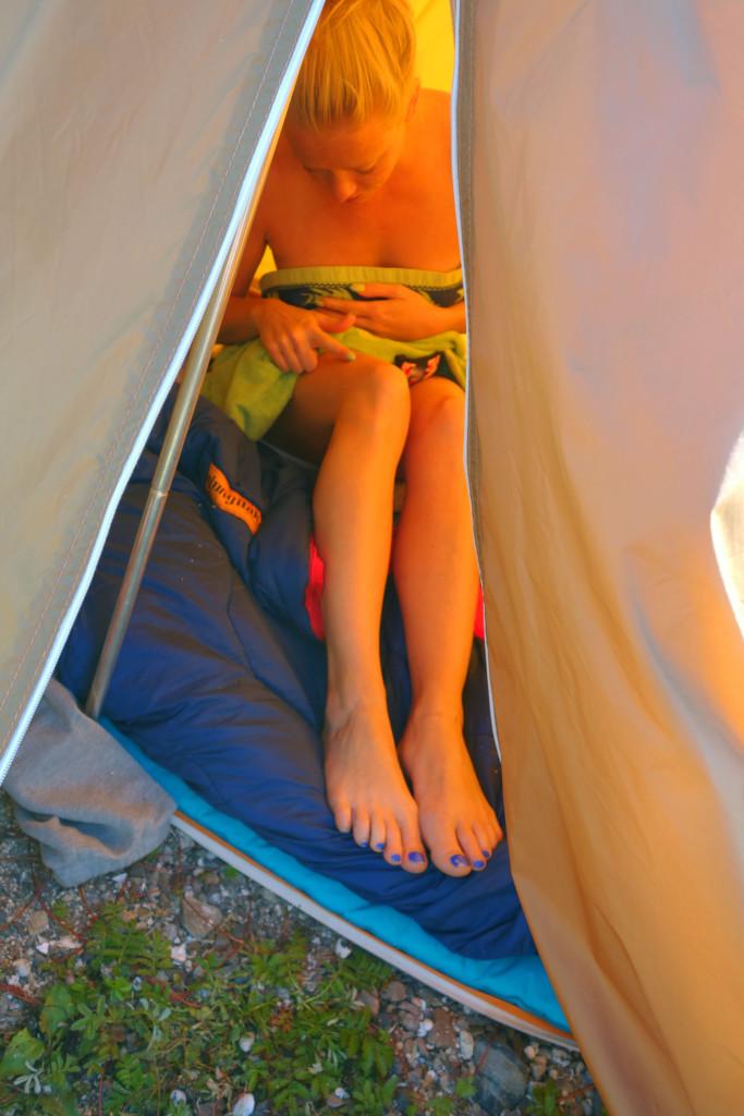 sjekker flått i teltet stavern