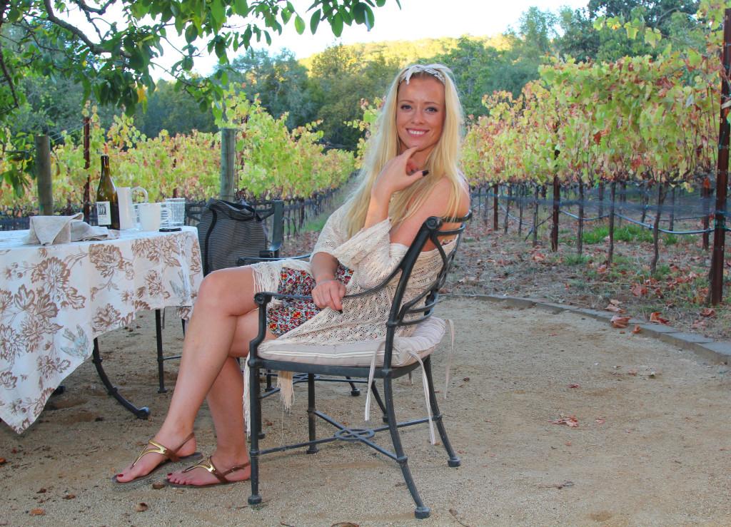 vinyard winery sonoma county amazing